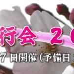 桜吟行会2021
